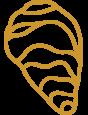 ZLT-oyster-gold